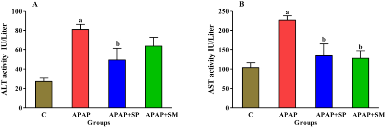 Hepatoprotective and antioxidant activity of hydroalcoholic extract of Stachys pilifera. Benth on acetaminophen-induced liver toxicity in male rats.